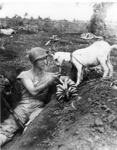 Ямаатай гадил хуваан идэж буй цэрэг. Сайпаны төлөөх тулаан. 1944 он.