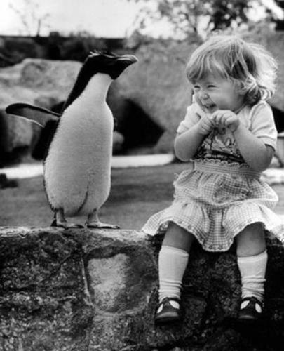 Анх удаа пингвин харж буй бяцхан охин.